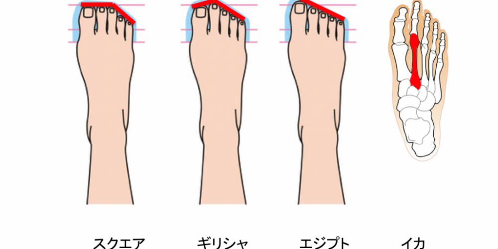 足型とは違います